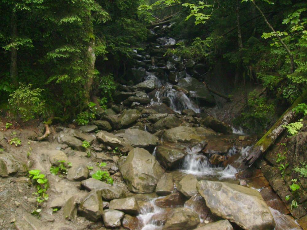 Mountain  streams  in  Carpatian  forest