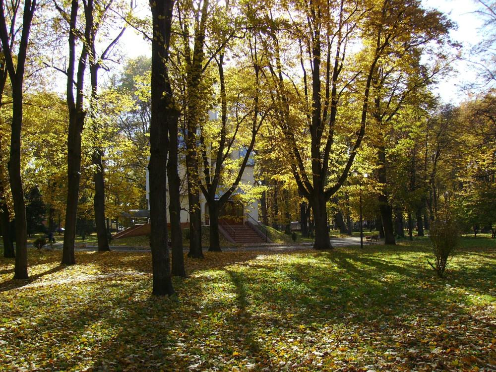 Autumn   in   Ivano - Frankivsk