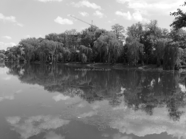 Ivano - Frankivsk   City   Lake