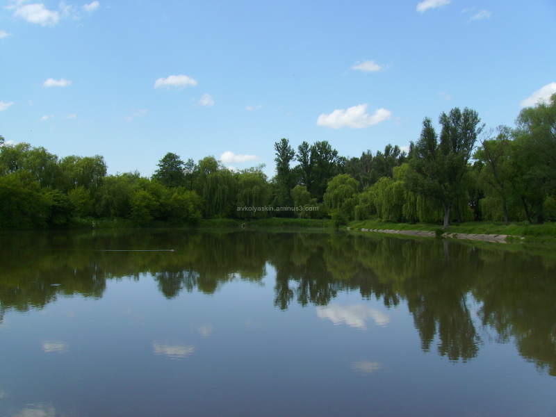 Small   lake  in   Ivano - Frankivsk