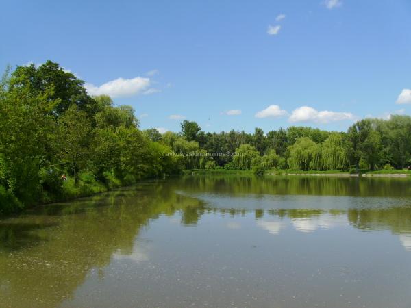 Small   lake  in   Ivano - Frankivsk