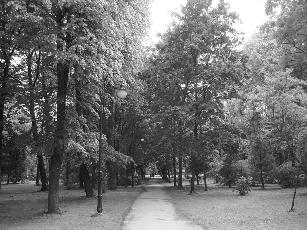 Ivano - Frankivsk   central   park