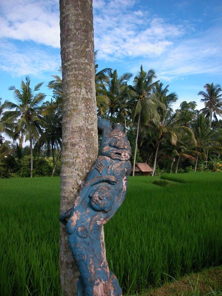 Bali & soul, 2