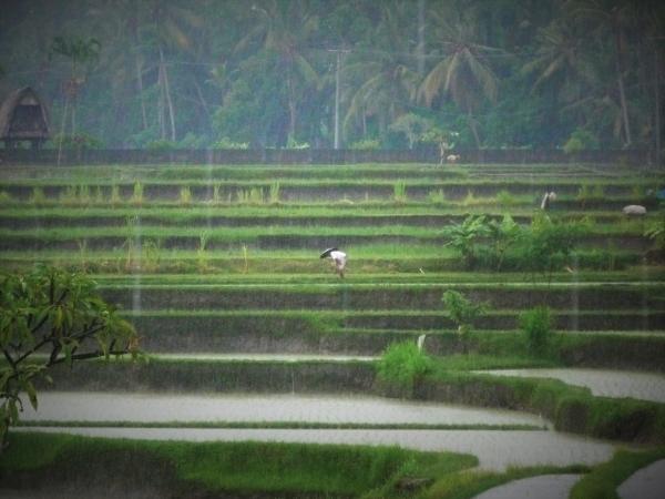Bali & soul, 9