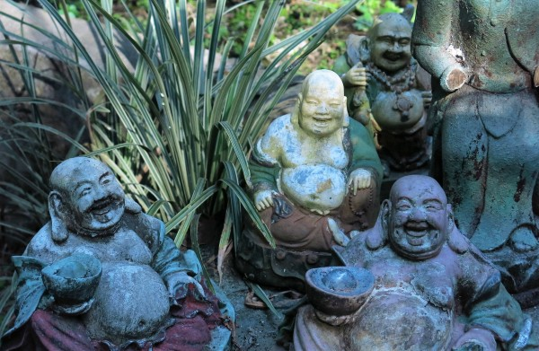 Laughing Buddhas Band