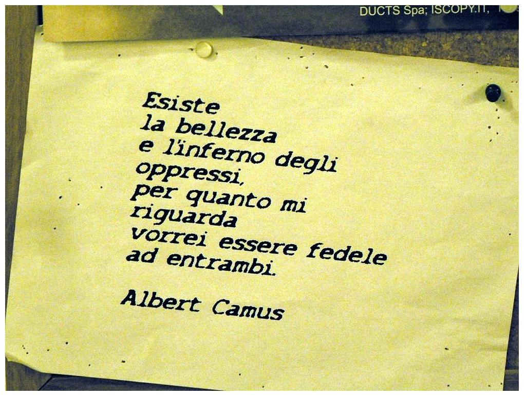 Ce qui compte selon Albert Camus