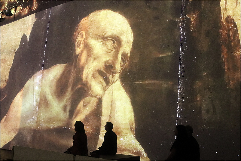 Leonardo, virtual exhibit