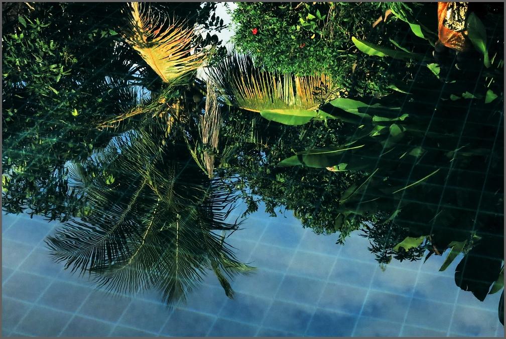 wetgreens