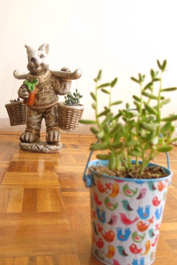 خرگوش باغبان   Rabbit Gardener