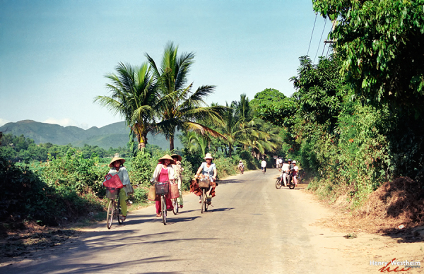 Vietnam Vietnamese women riding bicycles