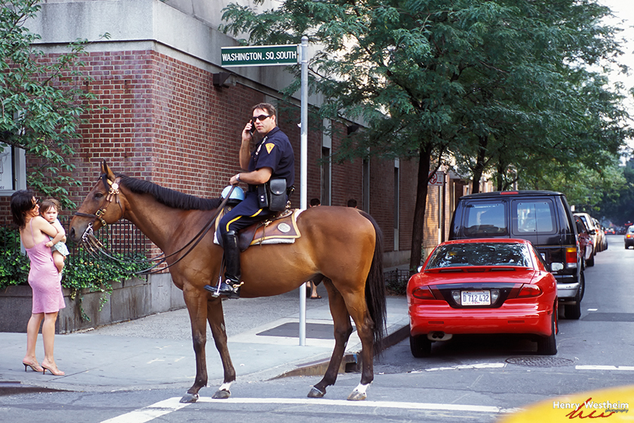 Mounted police officer, New York City, NYC