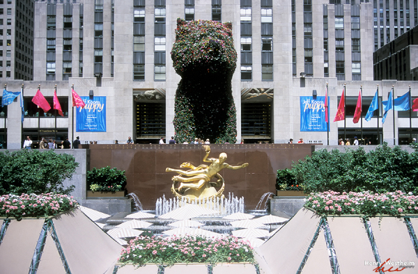 Rockefeller Center Plaza, New York City, NYC