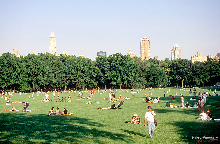 Central Park, Sheep Meadow, New York City, NYC