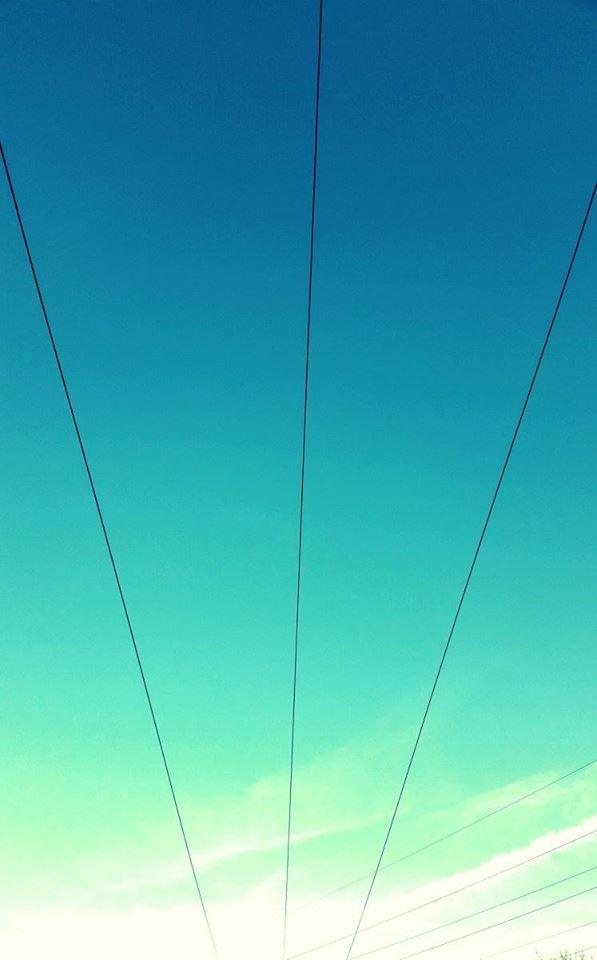Lifewires
