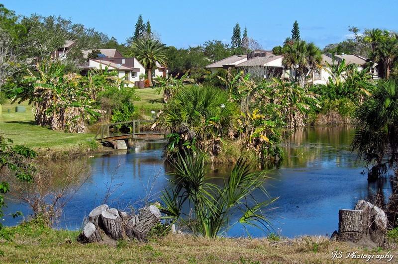 Naturally landscaped retention pond