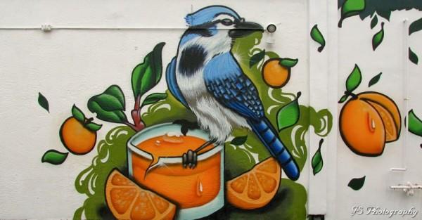 Orange and blue jay street mural
