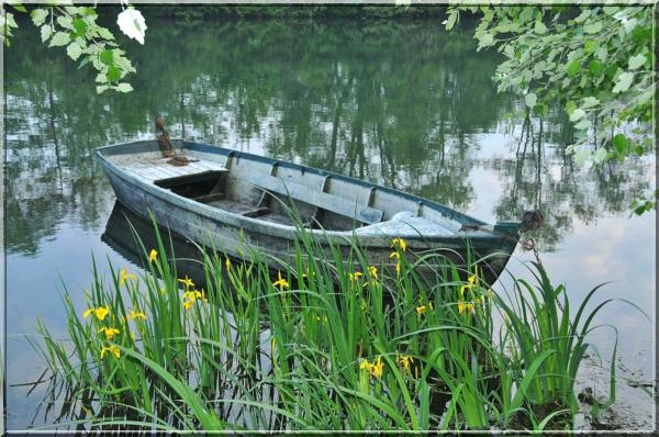 fishing boat on the river Loiret close to Orléans