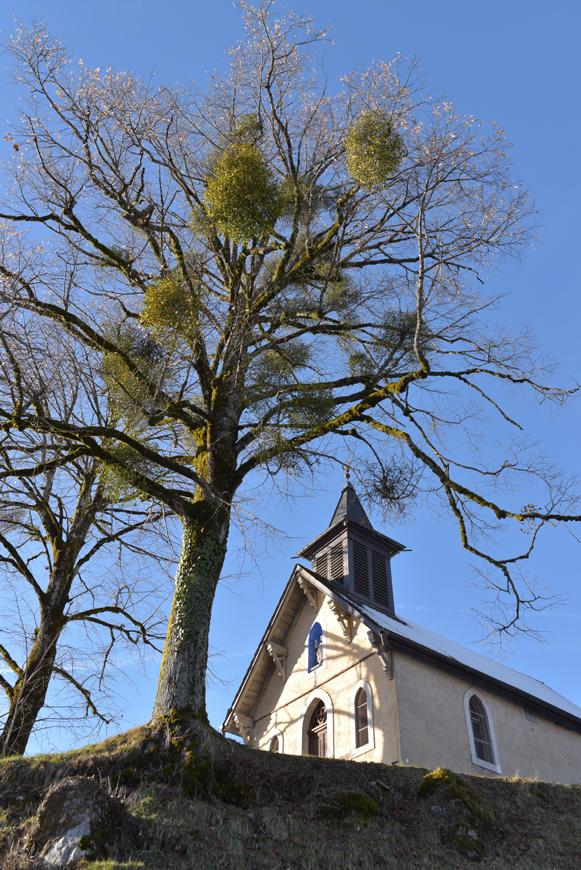 chapel de Mathonex at Samoens (74)