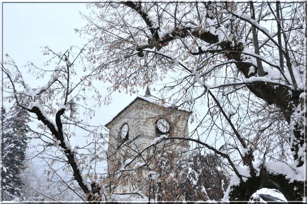 Samoens' church behind a snow-covered tree