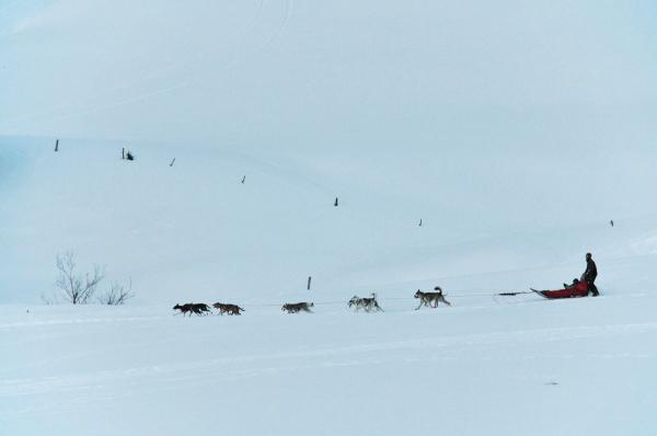 a sledge at col des Aravis (Haute-Savoie, France)