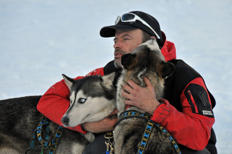 a musher strokes two of his dogs