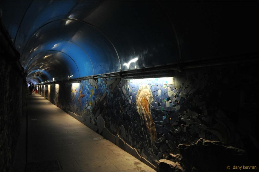 Riomaggiore, the tunnel of the station