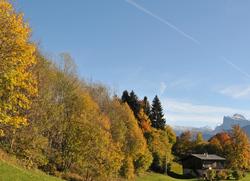 vues d'automne     autumnal views  (2)