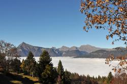 vues d'automne     autumnal views  (9)