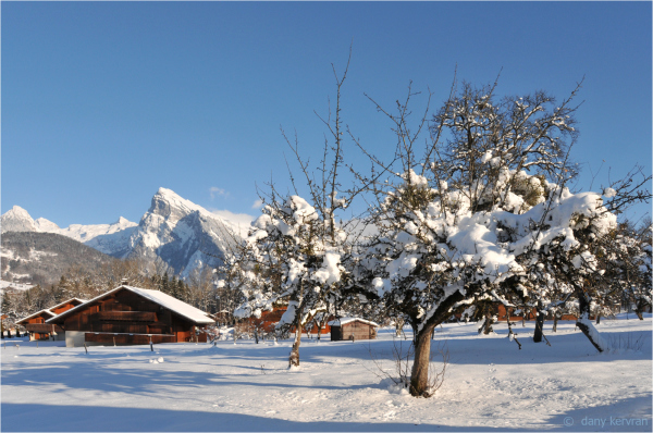 Morillon in Winter season