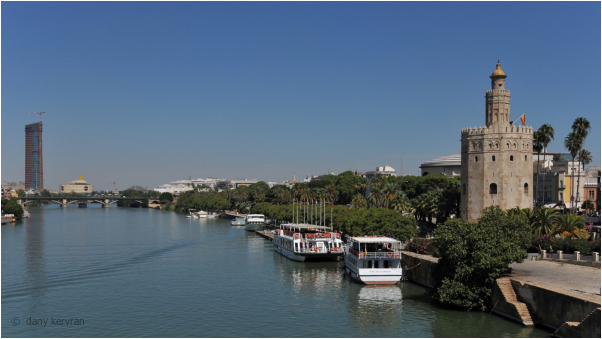 la Torre del Oro in Seville