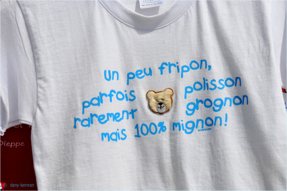 tee-shirt with text