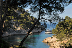 les calanques : Port Pin