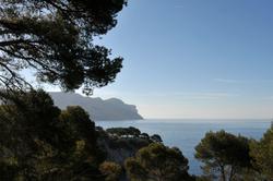 les calanques : Port Miou (3)