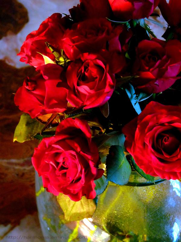 Variation autour d'un bouquet - 2