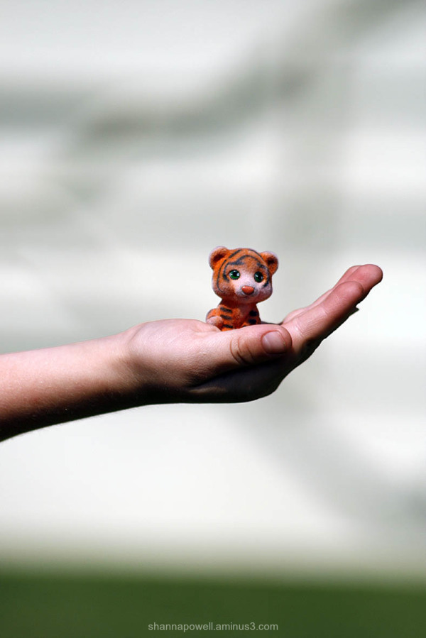 Child's toy in hand