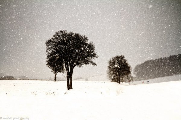 hiver profond