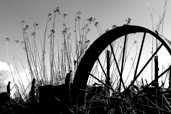 Old Farm Equipment Wheel