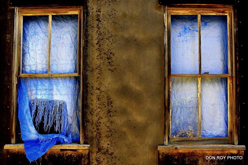 Blue  Velvet   (2)