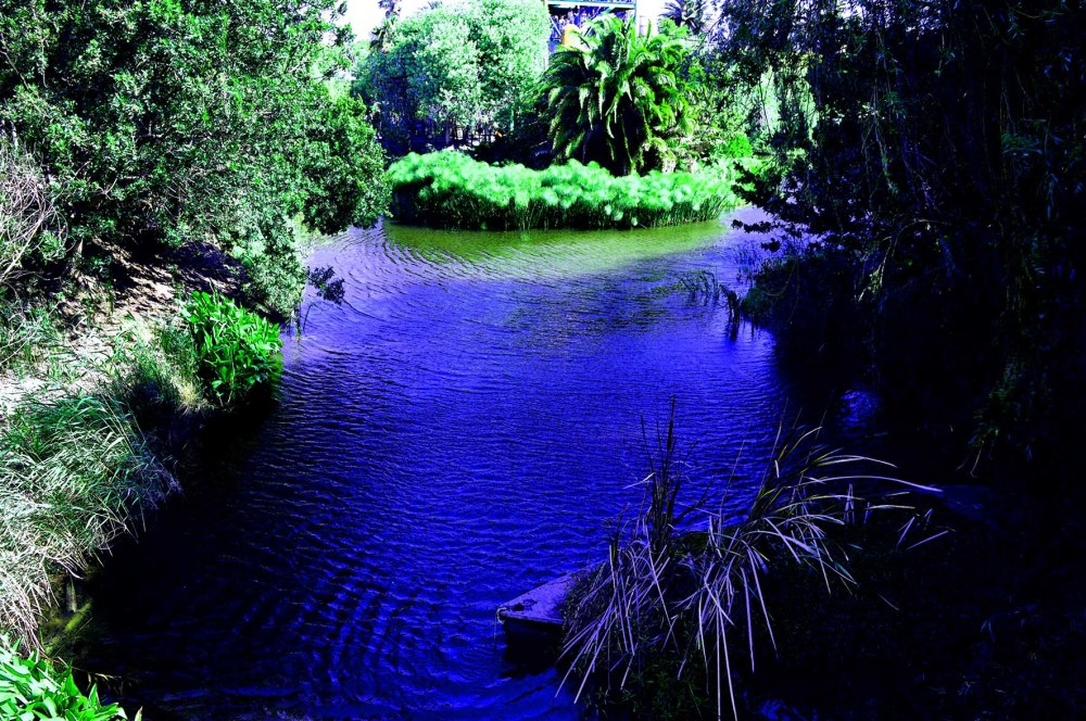 water pond reflected in blue