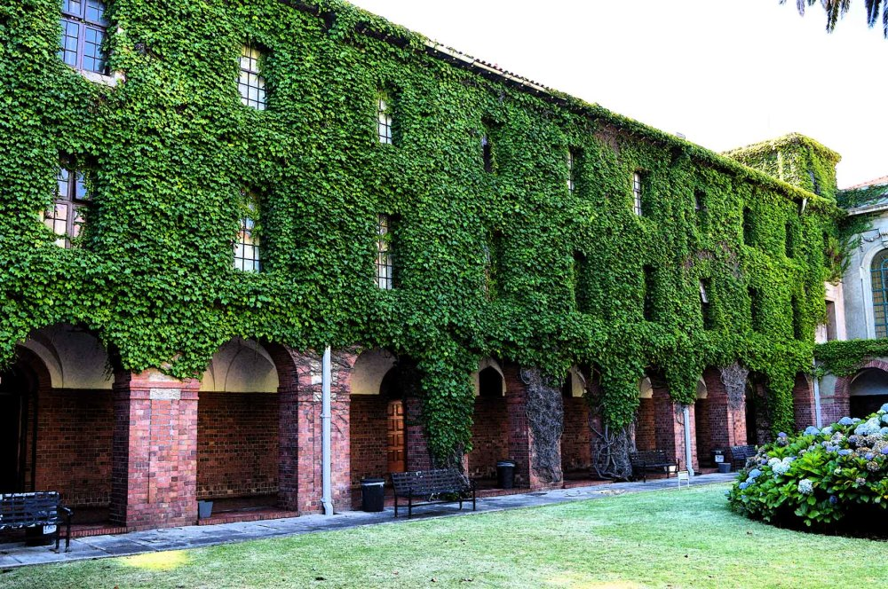 Ivy covered residence at UCT