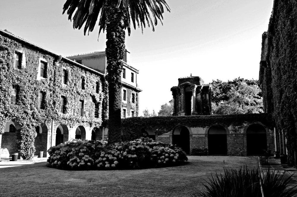 University of Cape Town Garden