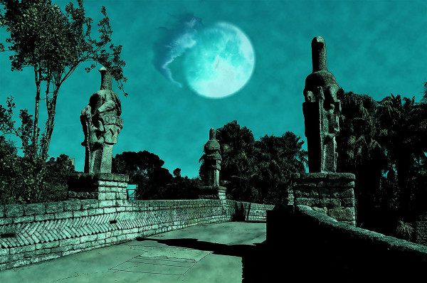 Ratanga Junction By Night