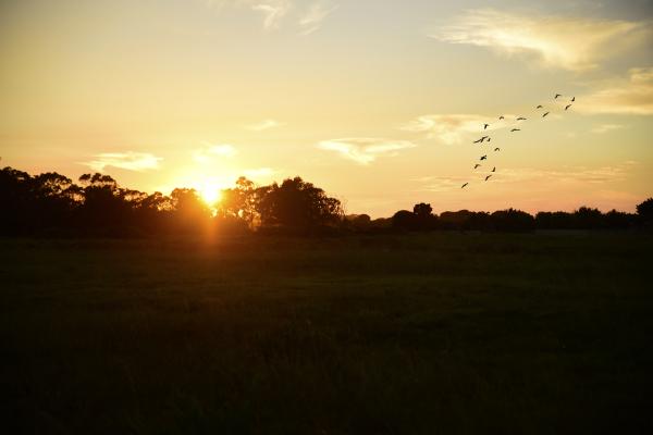 Sunrise Walmer Heights Port Elizabeth Eyeconic