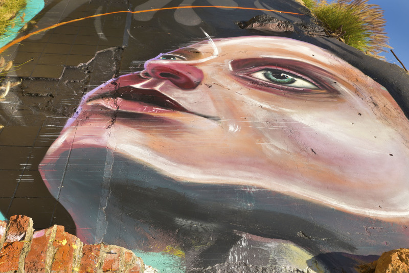 Baakens Valley Street Art Graffiti Port Elizabeth