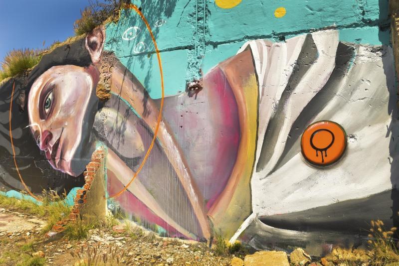 Baakens Valley Port Elizabeth Street Art Graffiti