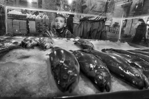 Fish & Kid