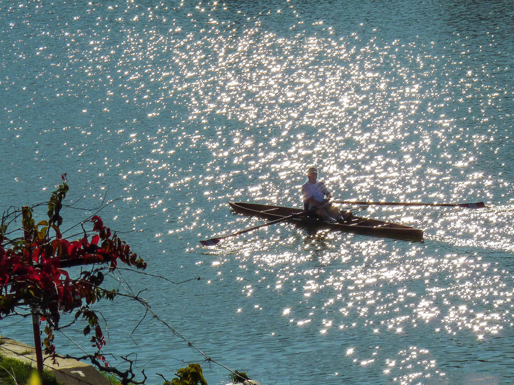 Rower kissed by the morning light
