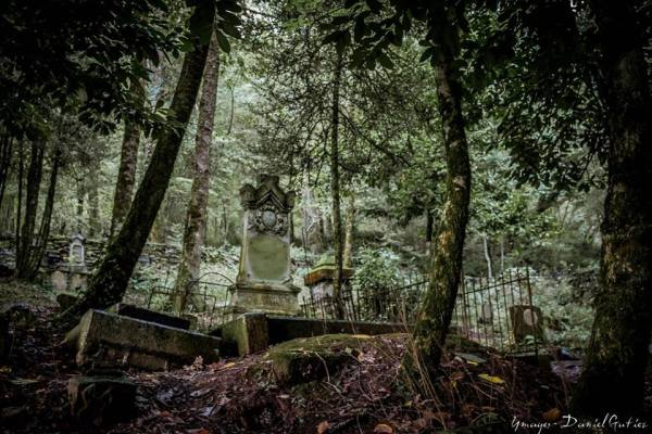 Le cimetière abandonné...