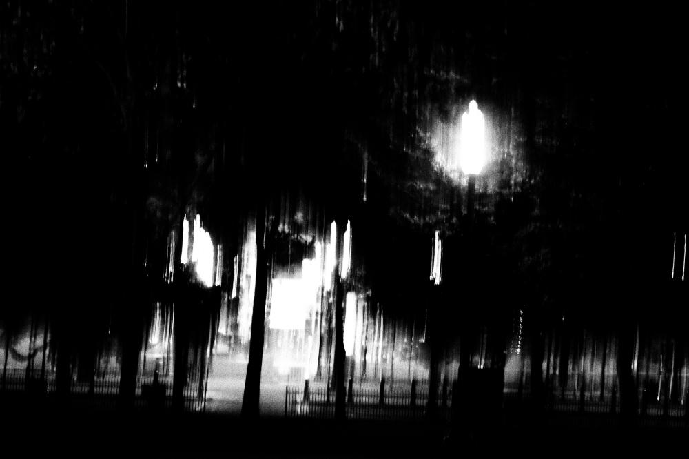 """""""Lights"""""""