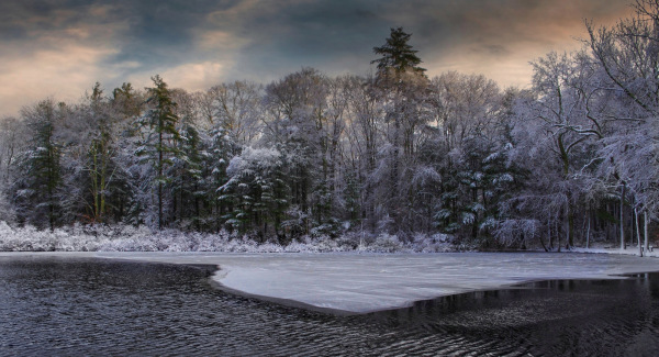 Dawn Norwell Reservation Massachusetts
